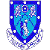 Rugby Town logo